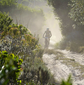 Canadian company invests in Knysna race
