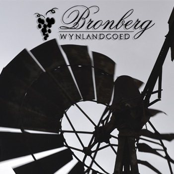 For Dream Weddings in South Africa Rely Only on Bronberg Wynlandgoed