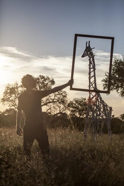 SA Artist Wins International Conservation Art Award