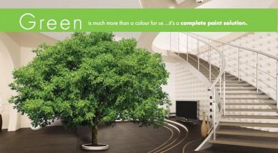A Green Future for Paint – Kansai Plascon