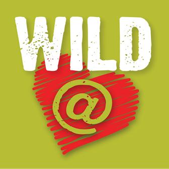 Wild at heart Absa Kirkwood Wildsfees
