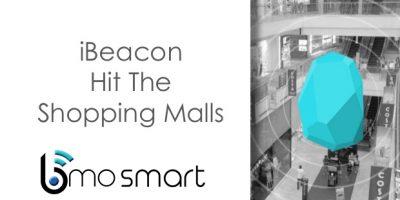 Blueberry Beacon Sets to Raise $17,500 US Dollar through Crowdfunding Platform www.Indiegogo.Com