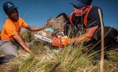 Partnering up in KwaZulu-Natal to save rhinos