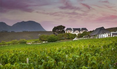 Bouchard Finlayson features as 'SA wine icon' nominee in Klink awards
