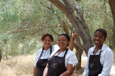 Cascade Country Manor gets another thumbs-up for Western Cape eco-tourism