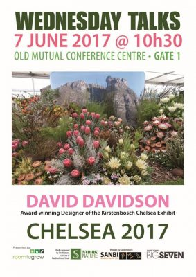 David Davidson's experience of the #ChelseaFlowerShow2017