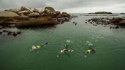 The Torpedo SwimRun