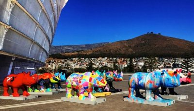 The Rhinos Are Coming – Delighting Cape Town with Art Rhinos