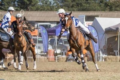 Land Rover Durban High Goal Polocrosse Event Promises World Class Action
